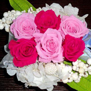 赤×ピンクバラ